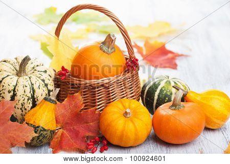 autumn halloween decorative pumpkins in basket