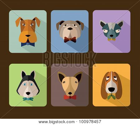 Big set of vector icons of dogs.