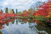 Autumn foliage at the stone bridge in Eikando Temple Kyoto Japan poster