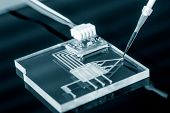 A lab on chip is device integrates several laboratory processes in one device, mostly LOC based on glass plate. poster