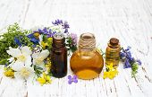 Nature oil with wildflowers on a old wooden background poster