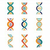 DNA, genetics vector icons set flat style poster