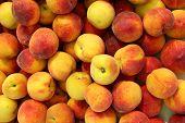 Peaches pattern texture fruit market peach background poster