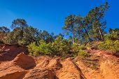 Roussillon, Red village of Provence. Picturesque canyon of production of ochre - natural paint. Multi-colored outcrops - from yellow to red-orange. Green trees create beautiful contrast from ochre poster