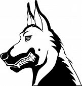 Clip art illustration of a black and white german shepherd showing its teeth poster