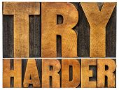 try harder motivational advice -isolated text in vintage letterpress wood type poster