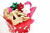 doggie biscuits in a christmas gift box poster