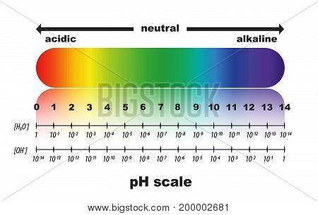 scale of ph value for acid and alkaline solutions , isolated or white background