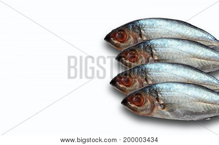 fresh tuna ,fish for cook ,tunas on white background