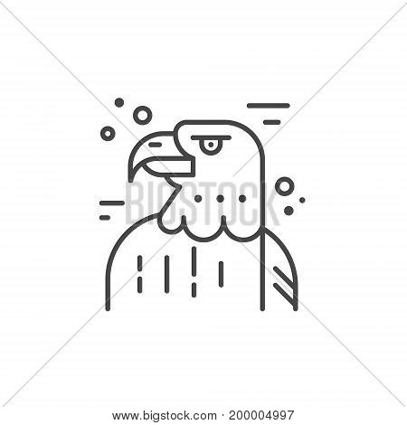 Linear illustration of an eagle. Vector line style icon.