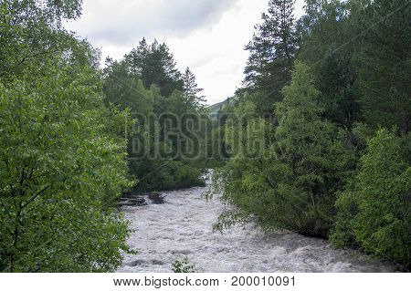 Mountain river between green trees in the foothills of Elbrus North Caucasus Russia