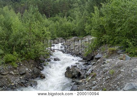 Mountain stream with stony shore between green trees in the foothills of Elbrus North Caucasus Russia.