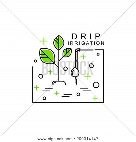 Line icon with plant and dropper. Drip irrigation, hydroponics.