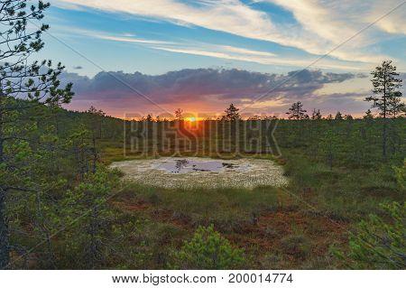 Setting sun over Suru Suursoo bog Harju county Estonia