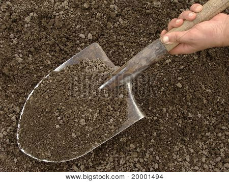 Hand With Spade