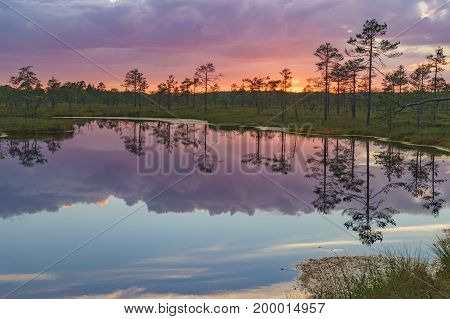 Fiery sunset with vivid clouds over Suru Suursoo bog reflection on water Harju county Estonia