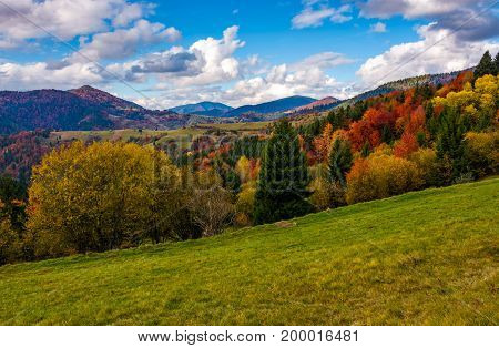 Mountains With Colorful Foliage Forest