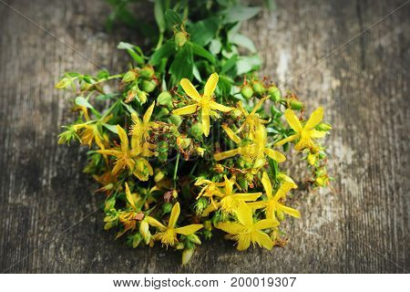 Saint-John's-wort flowers on a old wooden background .
