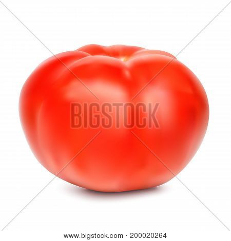 Red whole tomato isolated on a white background, close-up. A fresh tomato cut out with the texture and clipping path, vector 3D illustration.
