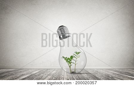 Glass lightbulb with green plant inside in empty room with grey wall on background. 3D rendering.