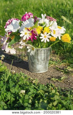 A bouquet of flowers in a small bucket standing on the path