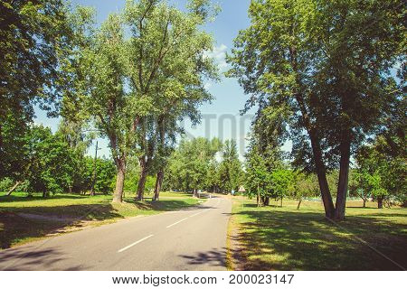Park in the city center in sunny clear summer weather
