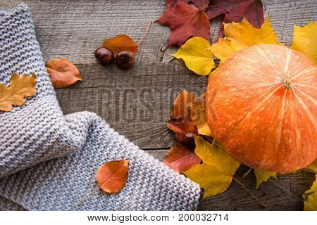 Autumn still life. Dry leaves, warm scarf and pumpkin on wooden board. Top view, vintage style. Flat lay.