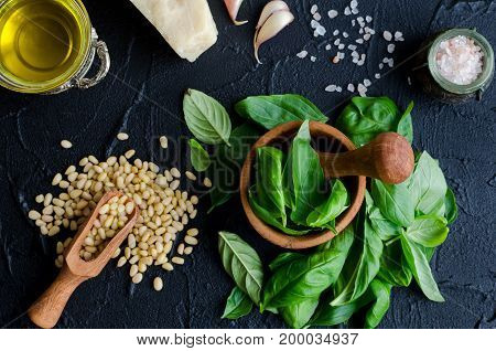 Fresh ingredients for pesto genovese sauce on black stone background from above. Parmesan cheese basil leaves pine nuts olive oil garlic and salt. Traditional Italian cuisine. Top view.