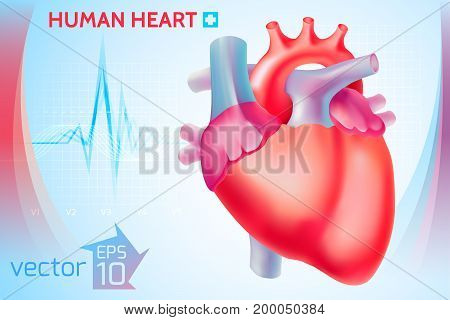 Medical healthy template with colorful human heart on light blue background vector illustration