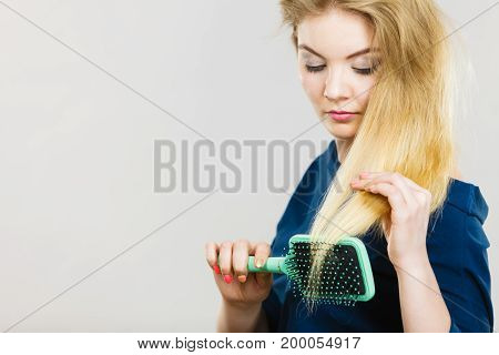 Woman combing her hair with brush. Young female with beautiful natural blond straight long hairs studio shot on grey