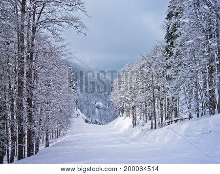 Foggy morning at mountains, mount Vogel, slovenian Alps, Slovenia
