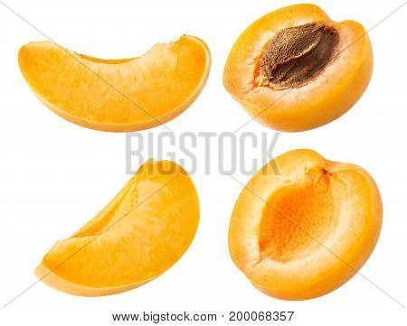 Collection of various apricot fruit slices and pieces