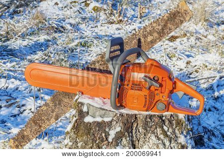 Chainsaw with old hand saw on stump in forest