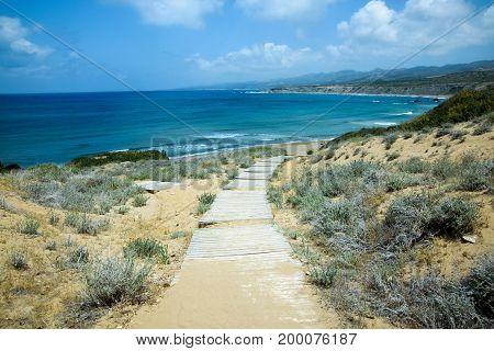 sunny wooden boardwalk to the wild beach