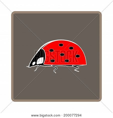 Ladybird isolated. Illustration ladybug in brown frame. Cute colorful sign red insect symbol spring summer garden. Template for t shirt apparel card poster. Design element Vector illustration