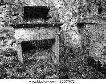 interior of a collapsed abandoned house in overgrown woodland with the remains of windows and a stone fireplace