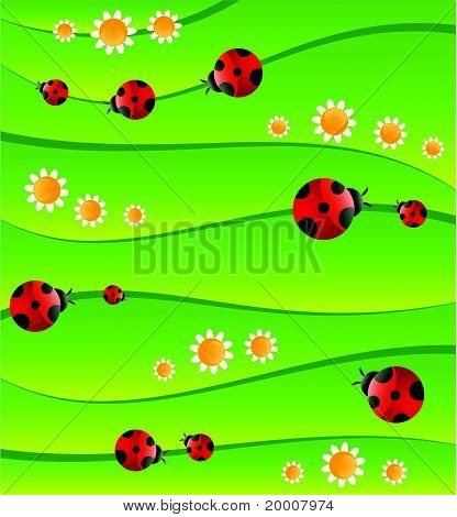 Green background with ladybug. Vector