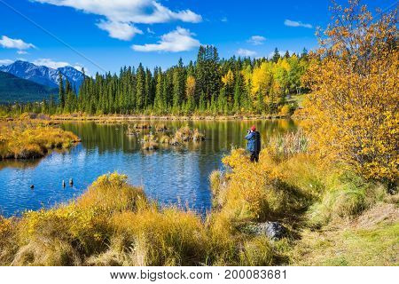 The woman - tourist in a jacket photographs a fine landscape. Concept of ecological tourism. Indian summer in the Rocky Mountains of Canada