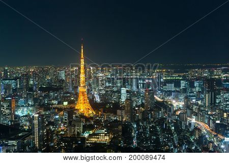 View of Tokyo skyline in night time at Japan.