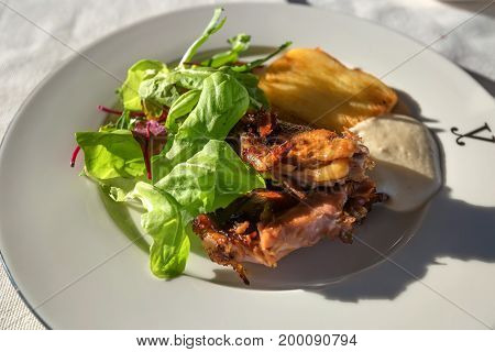 Close up roast pheasant with salad leaves served on white plate