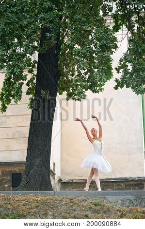 Professional female ballet dancer performing under the big tree outdoors dancing art expressive beauty sensuality.