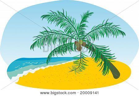VECTOR SUMMER BEACH WITH SEA SUN AND PALM TREE