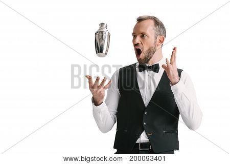 Handsome Bartender With Shaker