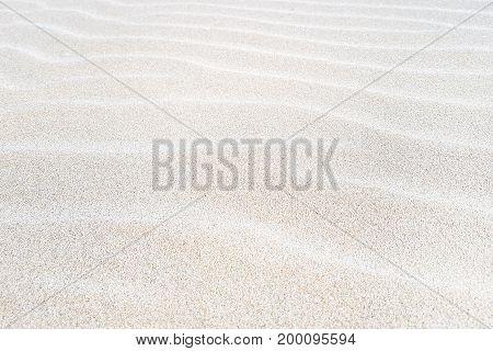 Sand on the beach as a background.