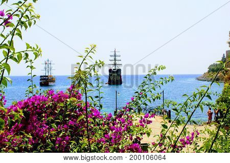 View of pleasure sailing ships from thickets of red flowers (Alanya, Turkey).