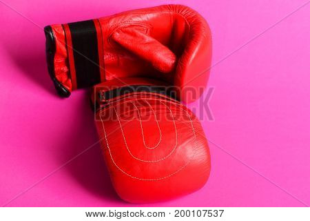 Pair Of Thai Boxing Sport Gloves In Red On Magenta