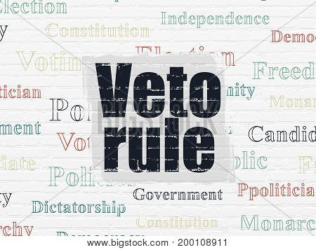 Political concept: Painted black text Veto Rule on White Brick wall background with  Tag Cloud
