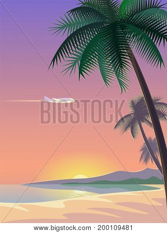 Airplane and tropical paradise palm tree surfboards. Sunny sand coast beach sea ocean landscape.Vector background illustration for text art