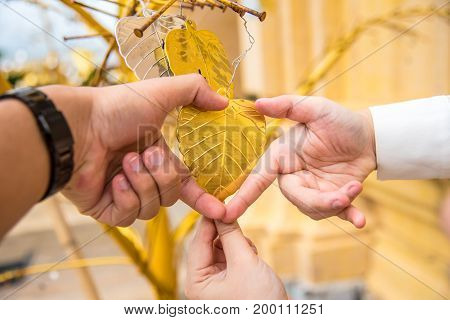 The couple of love gesture thier hand into a hear with bronze leaf in center