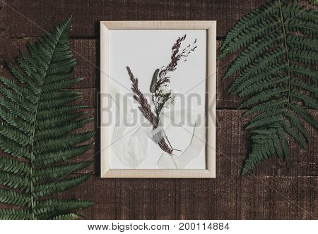 Rustic Boutonniere Under Glass In Frame On Wooden Rustic Background With Fern Leaves. Barn Wedding C